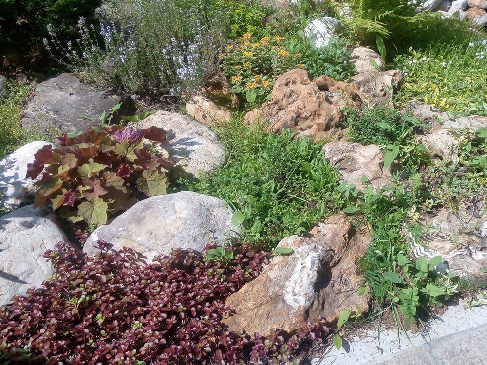 Пример работы - альпийская горка на участке