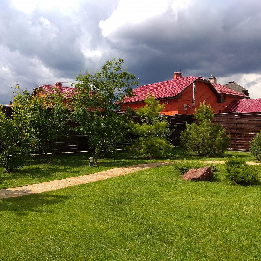 Пример готового газона 1 - фото